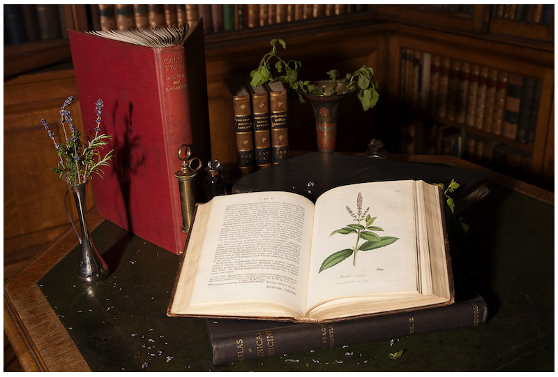 Still life with books, herbs, and medical equipment at the Library at the Royal College of Physicians of Edinburgh