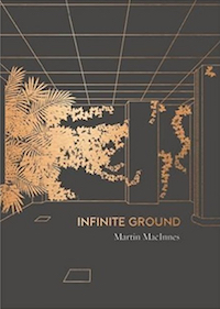 'Infinite Ground' by Martin MacInnes